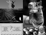 ನಾಲ್ಕನೇ ಸಂಪುಟದ ತೃತೀಯ ಸಂಚಿಕೆ-ಗ್ರೀಷ್ಮ ಗಾಂಭೀರ್ಯ (ಮೇ-ಜೂನ್) ೨೦೧೦